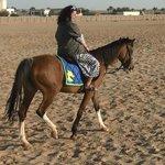 Прогулка на лошадях (назад в пустыню)