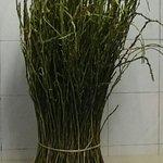 Asparagi selvatici freschi