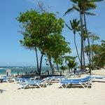 La plage devant l'hôtel (à 10 mètres)