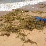 Beach Sanya - terrible!