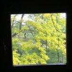 dalla finestra del bagno