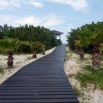 Il sentiero che porta alla spiaggia privata del Royal Service