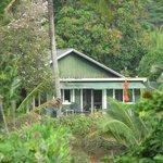 Photo de Mahinani's Farm