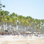 Playas lindas, excepto por el agua