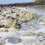 Rocas volcánicas y arena blanca