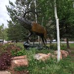 Saw this cool bull elk statue on the grounds