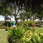 Hermosa vista de los jardines del hotel
