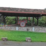 traditional oxcart on display