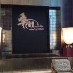 Waterfall wall in the lobby area