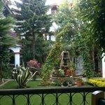 Hermoso jardín!!