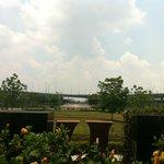 Garden View :)