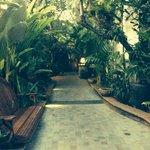 Walkwsy to hotel