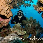 April 2014 Jay Wink guiding USA certified divers