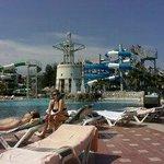 Het mooie zwembad met voldoende ligstoelen