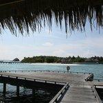 View from Ocean villa
