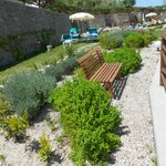 aroma bench and herbs