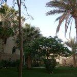 Hotel Marine Lodge, Port Ghalib