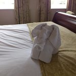 Don't ring housekeeping for your 'missing' towels. Here they are!