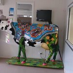 Painted cow at the dairy farm