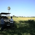 Tea break on our game drive