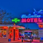Blue Swallow at night with neon lights