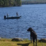 Enjoy some relaxing fishing right out our doorstep.  A dog Gabby will be your lifeguard!