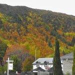 Herbst in Arrowtown
