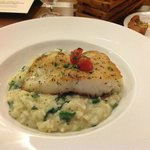 Spigola (Sea Bass) and Risotto, at Osteria Pronto in the JW Marriott, Indianapolis