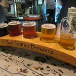 Craft Brew Tours in Fort Collins
