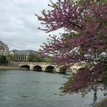 View of Pont Neuf from park in the Ile de la Cite