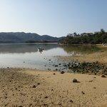 琉球真珠付近からの風景