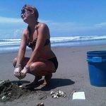 Tours with Sea Turtles Volunteers
