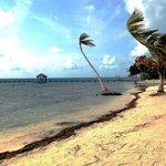 La playa del hotel Royal Caribbean Resort, San Pedro, Belice
