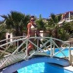 Poolside @palm garden ❤