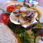 On the special board - Generous portion of scallops in mushroom sauce