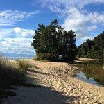 Apple Tree Bay