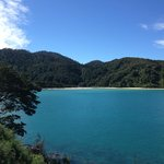 on the path to Awaroa Bay