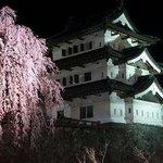 天守閣と枝垂桜