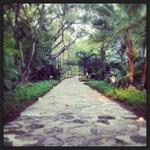 Candlelit walkway