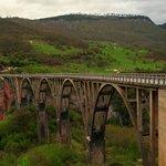 bridge over tara river