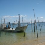 les bateaux dans le bassin coté Cap ferret