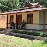 our Premier cabin