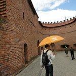 Following the Orange Umbrella