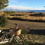 la vue à la sortie de l'hôtel avec les vélos