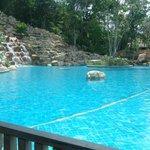the super pool