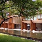 Peaceful garden faced with lobby