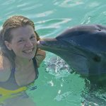 excursion with dolphins