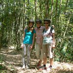 Biking through bamboo forest