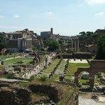 une partie du Forum vue du Palatin