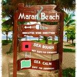 The beach board